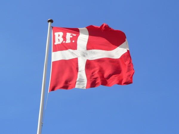 flag-frem
